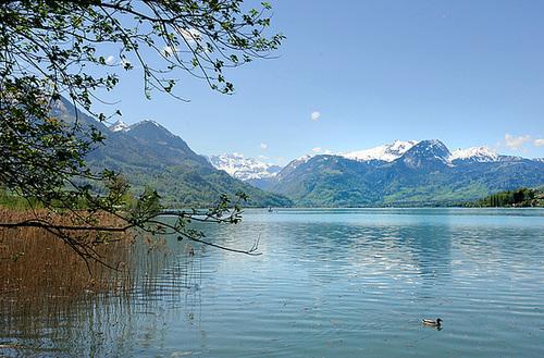 Lac de Sarnen (Suisse Centrale)...