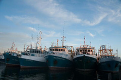 fishing boats at Freemantle