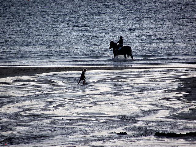 Horse rider child