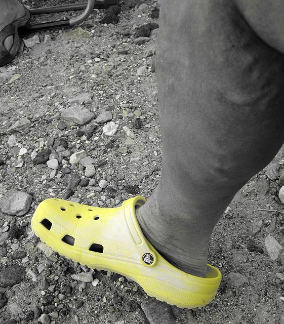 My Croc (2163)
