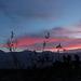 Saline Valley Sunset (0829)