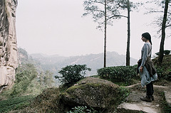 In the tea mountains