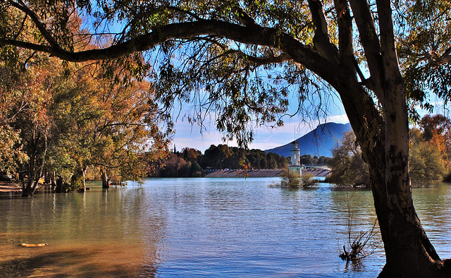Idilio (de la naturaleza...) en el pantano de Cubillas