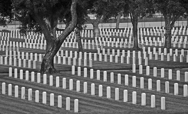 Los Angeles National Cemetery (5111A)