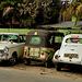 Jaffna taxis. Sri Lanka