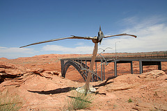 Glen Canyon Dam Pterodactyl (4389)