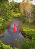 Hallucination / Au gré du courant........Following the river flow.....