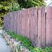 Woody fence in perspective / Clôture de bois en perspective.