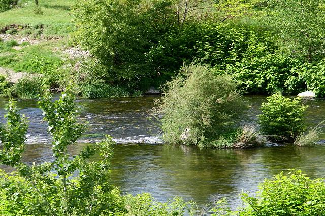Elle court...L'Embroye, sa rivière