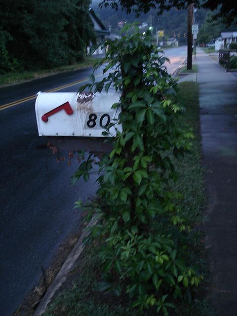 Mailbox 80 / Boîte à courrier numéro 80 - 13 juillet 2010