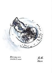 2012-03-28 Blaireau-avec-mousse-a-raser web