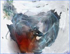 Dans la glace ...le feu