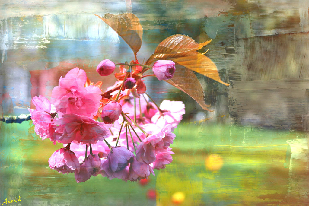 un printemps en pinck ***