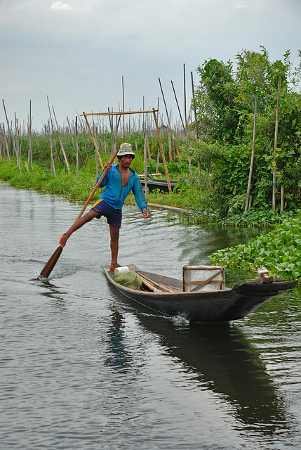Leg-rowing Intha man in Nge Hpe Chaung