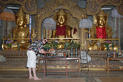 My oblation to Lord Buddha
