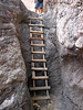 The Third Ladder (2060)