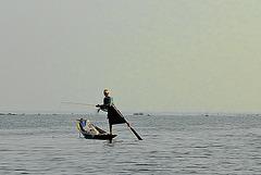 Fishing artist