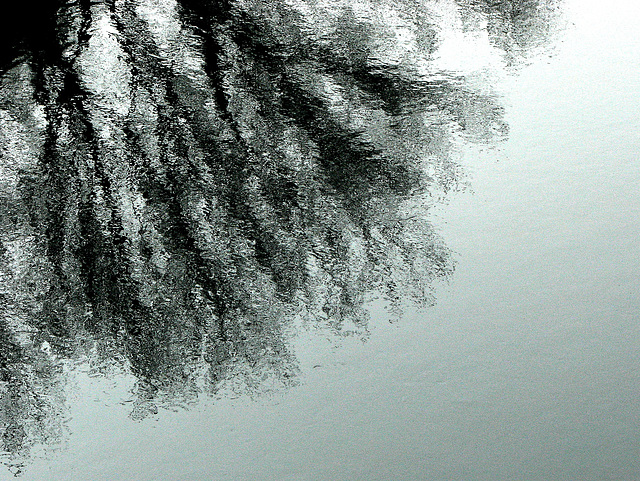 reflections 32