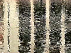 reflections 36