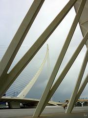El Puente Assut de l'Or