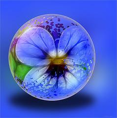 flower globe 3
