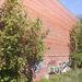 Façade, tag et arbuste / Shrubs, tags and brick wall.