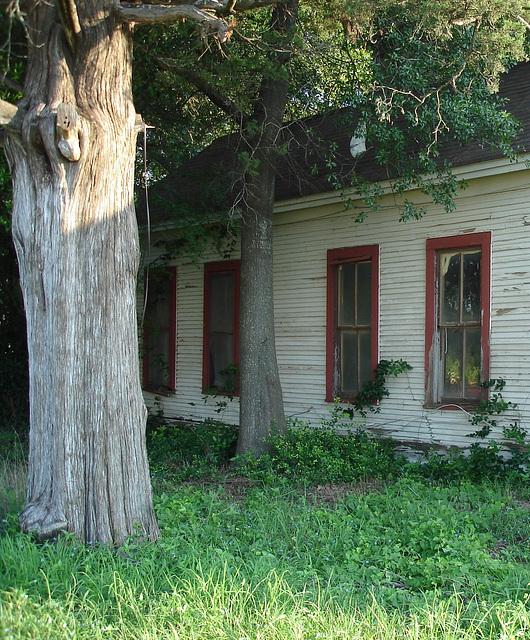 Maison texane / Texmade house - Jewett, USA / États-Unis - Recadrage.