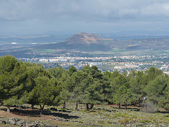La vega de Granada