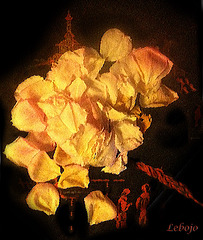 fleur a sang