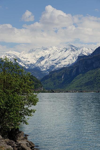 Le lac de Brienz...