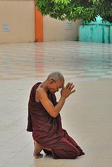Monk praying to the Buddha in Botataung Pagoda