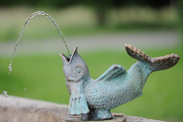 """La fontaine """"poisson""""..."""