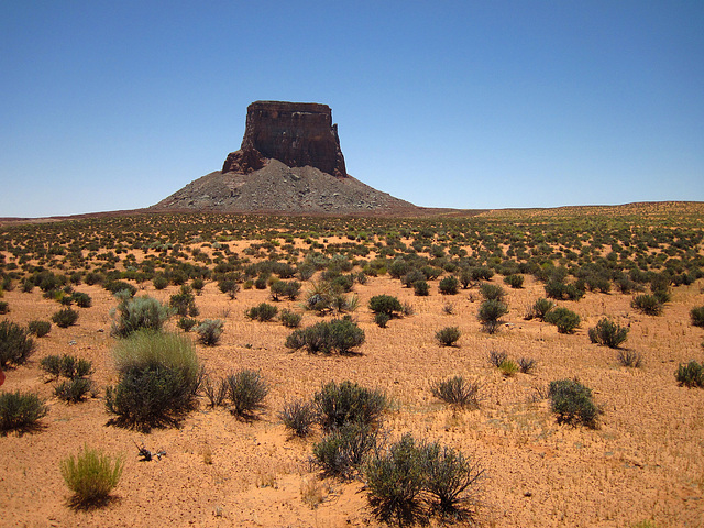 Tower Butte (2583)