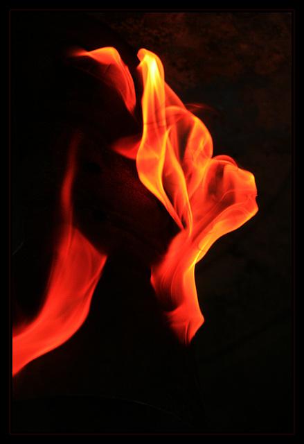 Schrei des Feuerdrachen