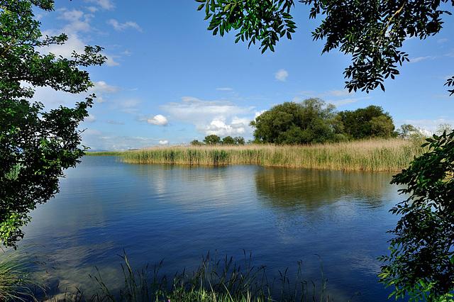 La réserve naturelle d'Ostende...