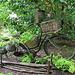 Bicyclette végétale