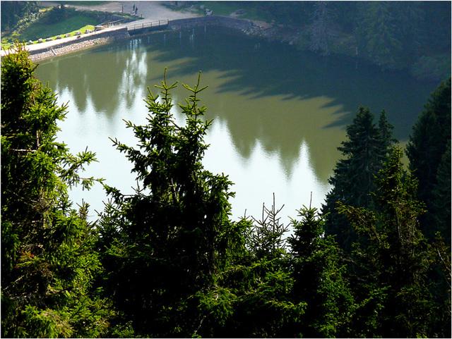 le lac vert : le bien nommé