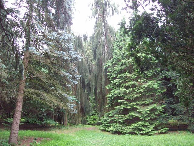 Debrecen, Botanika Ĝardeno