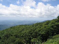 Green knob overlook / Blue Ridge Parway - 14 juillet 2010.