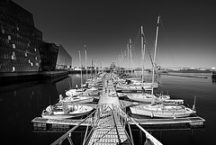 reykjavik_harbour