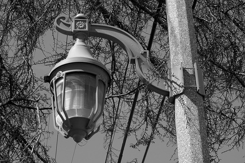 Streetlight on Cesar Chavez Blvd (0729)