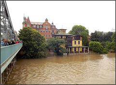 Dresden 04.06.2013, Loschwitzer Brücke 052