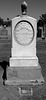 Eleven-year old died in 1881 - Evergreen Cemetery (0734)
