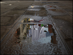 Reflet Vénitien