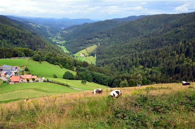 2012 08 06 Route des Crêtes 018