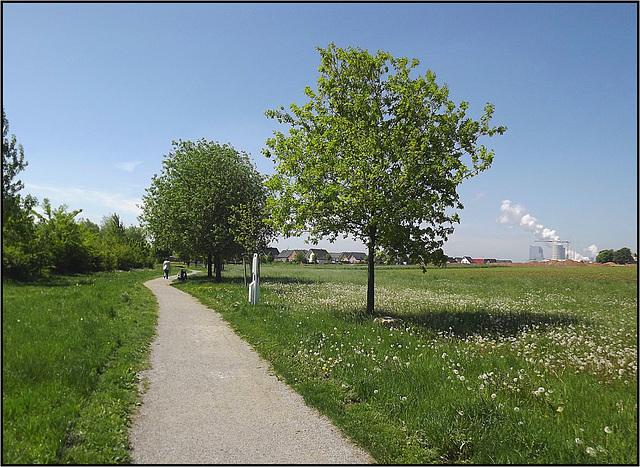 Rommerskirchen, Gillbachaue 012