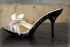Dame Annick et ses Bilitis / Lady Annick's Bilitis heels.