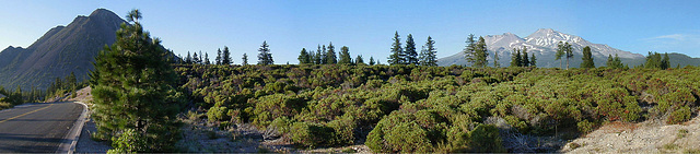 Black Butte & Mount Shasta