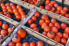 Persimmons – The Ferry Building Marketplace, San Francisco, California