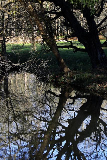 Parc du chateau de Chantilly